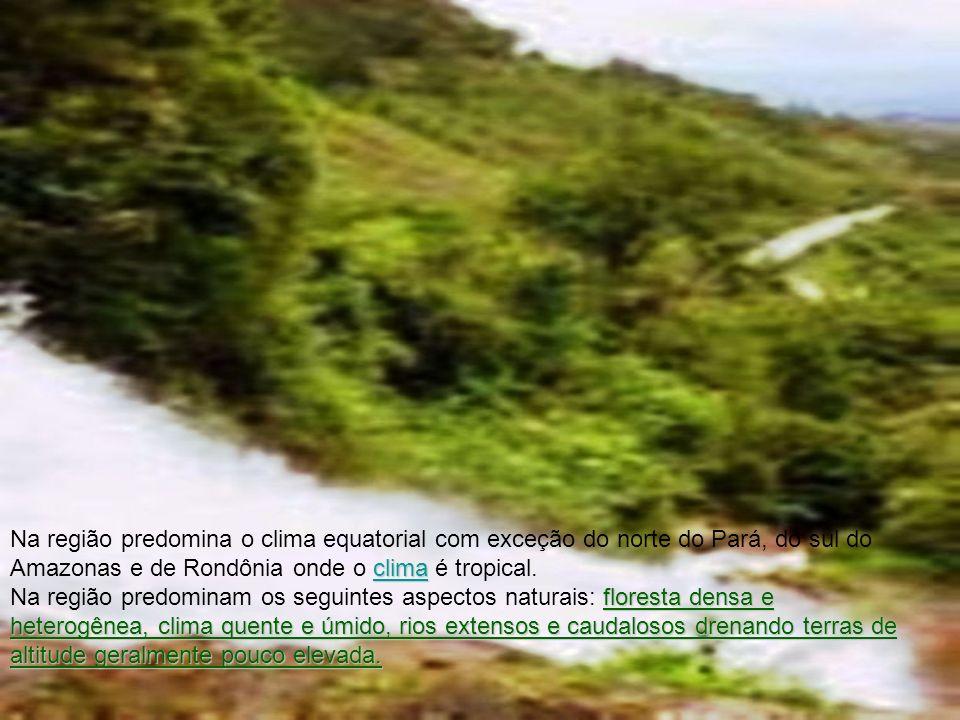 clima clima Na região predomina o clima equatorial com exceção do norte do Pará, do sul do Amazonas e de Rondônia onde o clima é tropical.clima flores
