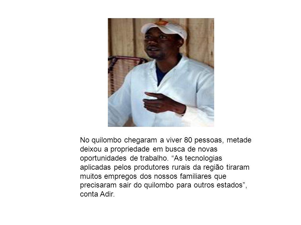 No quilombo chegaram a viver 80 pessoas, metade deixou a propriedade em busca de novas oportunidades de trabalho. As tecnologias aplicadas pelos produ
