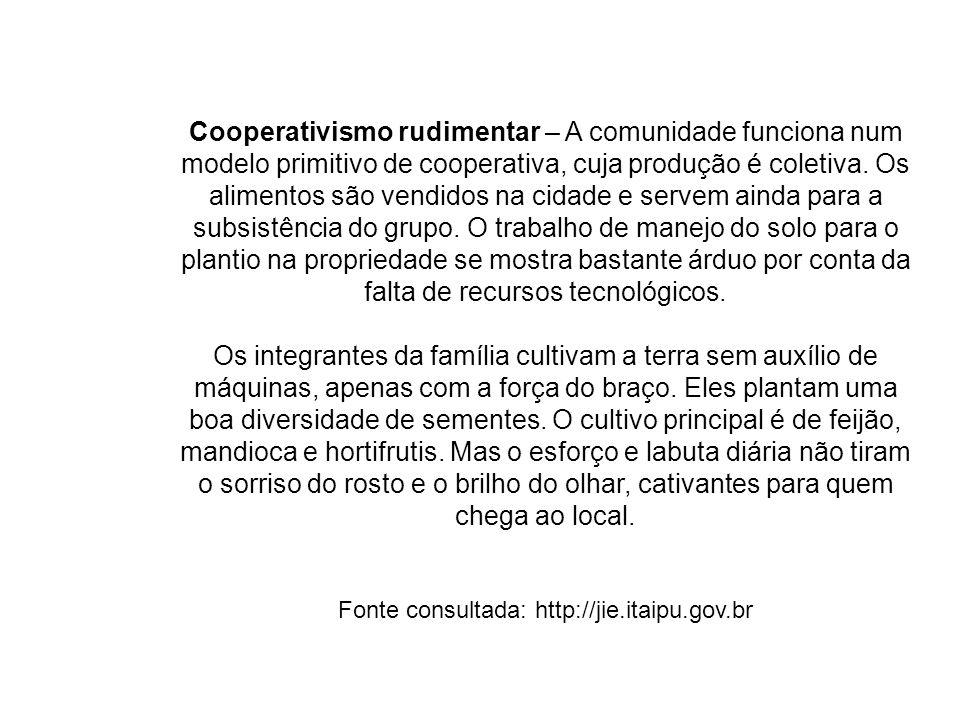 Cooperativismo rudimentar – A comunidade funciona num modelo primitivo de cooperativa, cuja produção é coletiva. Os alimentos são vendidos na cidade e