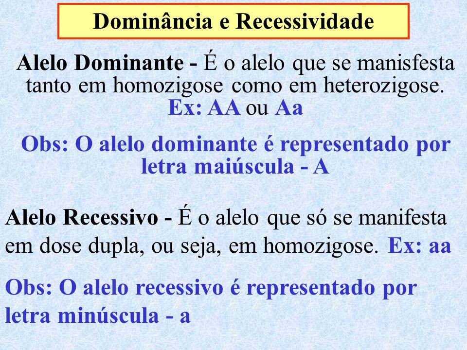 Dominância e Recessividade Alelo Dominante - É o alelo que se manisfesta tanto em homozigose como em heterozigose. Ex: AA ou Aa Obs: O alelo dominante