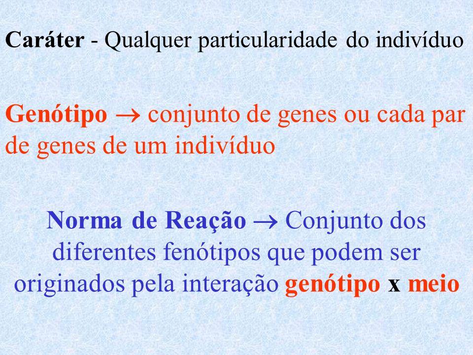 46 cromossomos 23 pares Cromossomos homólogos São cromossomos que possuem os mesmos loci gênicos Locus gênico - Lugar que o gene ocupa no cromossomo.