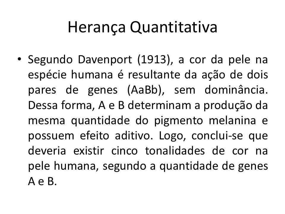 Herança Quantitativa Segundo Davenport (1913), a cor da pele na espécie humana é resultante da ação de dois pares de genes (AaBb), sem dominância. Des