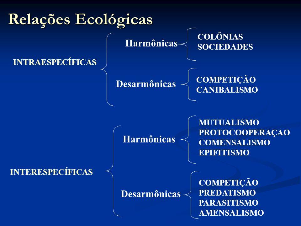 Relações Ecológicas INTRAESPECÍFICAS INTERESPECÍFICAS COLÔNIAS SOCIEDADES Harmônicas Desarmônicas MUTUALISMO PROTOCOOPERAÇAO COMENSALISMO EPIFITISMO COMPETIÇÃO PREDATISMO PARASITISMO AMENSALISMO Harmônicas Desarmônicas COMPETIÇÃO CANIBALISMO