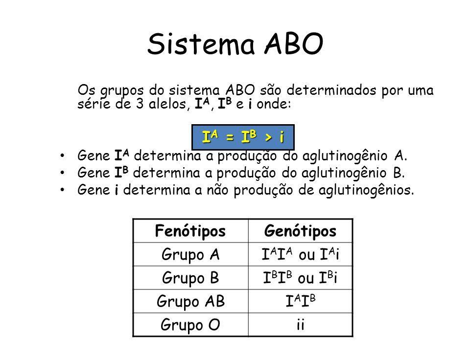 Sistema ABO Os grupos do sistema ABO são determinados por uma série de 3 alelos, I A, I B e i onde: Gene I A determina a produção do aglutinogênio A.