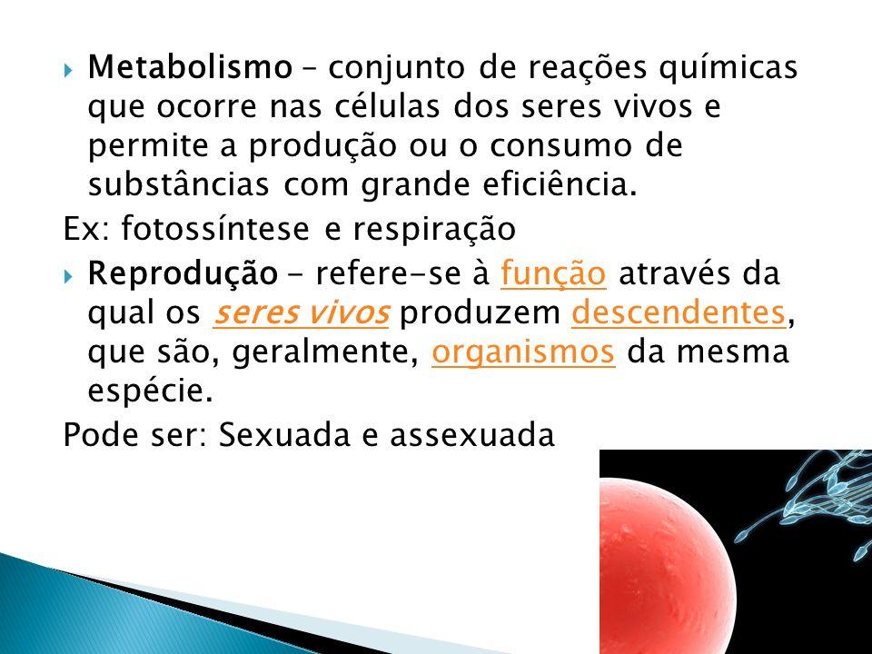 Metabolismo – conjunto de reações químicas que ocorre nas células dos seres vivos e permite a produção ou o consumo de substâncias com grande eficiênc