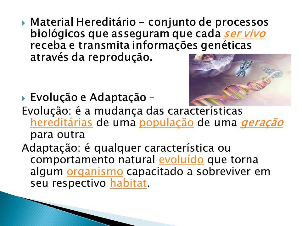 Material Hereditário - conjunto de processos biológicos que asseguram que cada ser vivo receba e transmita informações genéticas através da reprodução