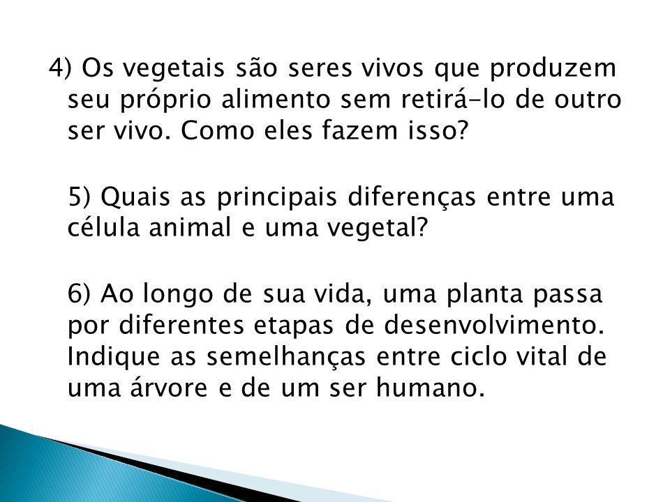 4) Os vegetais são seres vivos que produzem seu próprio alimento sem retirá-lo de outro ser vivo. Como eles fazem isso? 5) Quais as principais diferen