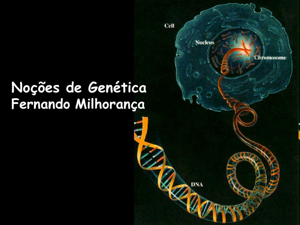 Noções de Genética: Resumo desta aula: Introdução à Genética fmilhoranca.wikispaces.com AULA PARA DOWNLOAD 3º ano