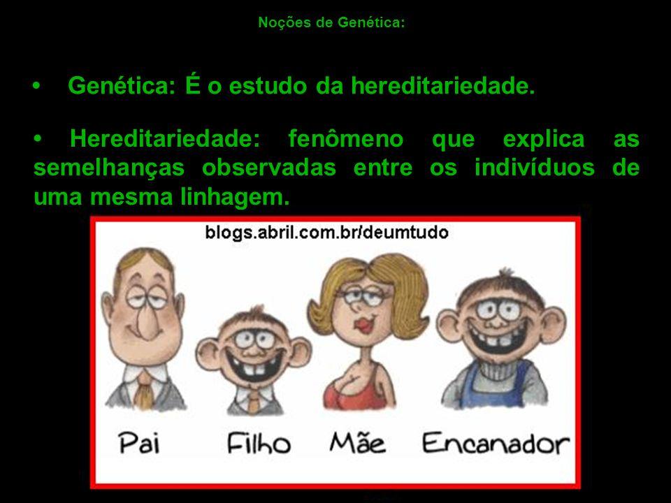 Genética: É o estudo da hereditariedade. Noções de Genética: Hereditariedade: fenômeno que explica as semelhanças observadas entre os indivíduos de um