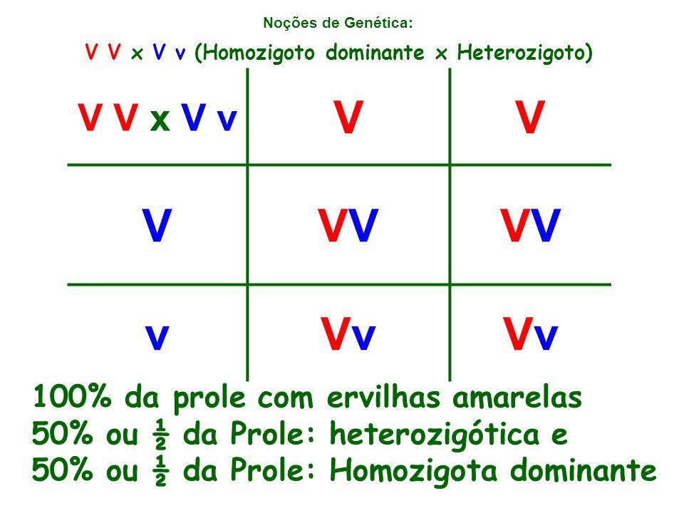 Noções de Genética: V V x V v VV VVV vVvVvVvVv V V x V v (Homozigoto dominante x Heterozigoto) 100% da prole com ervilhas amarelas 50% ou ½ da Prole: heterozigótica e 50% ou ½ da Prole: Homozigota dominante