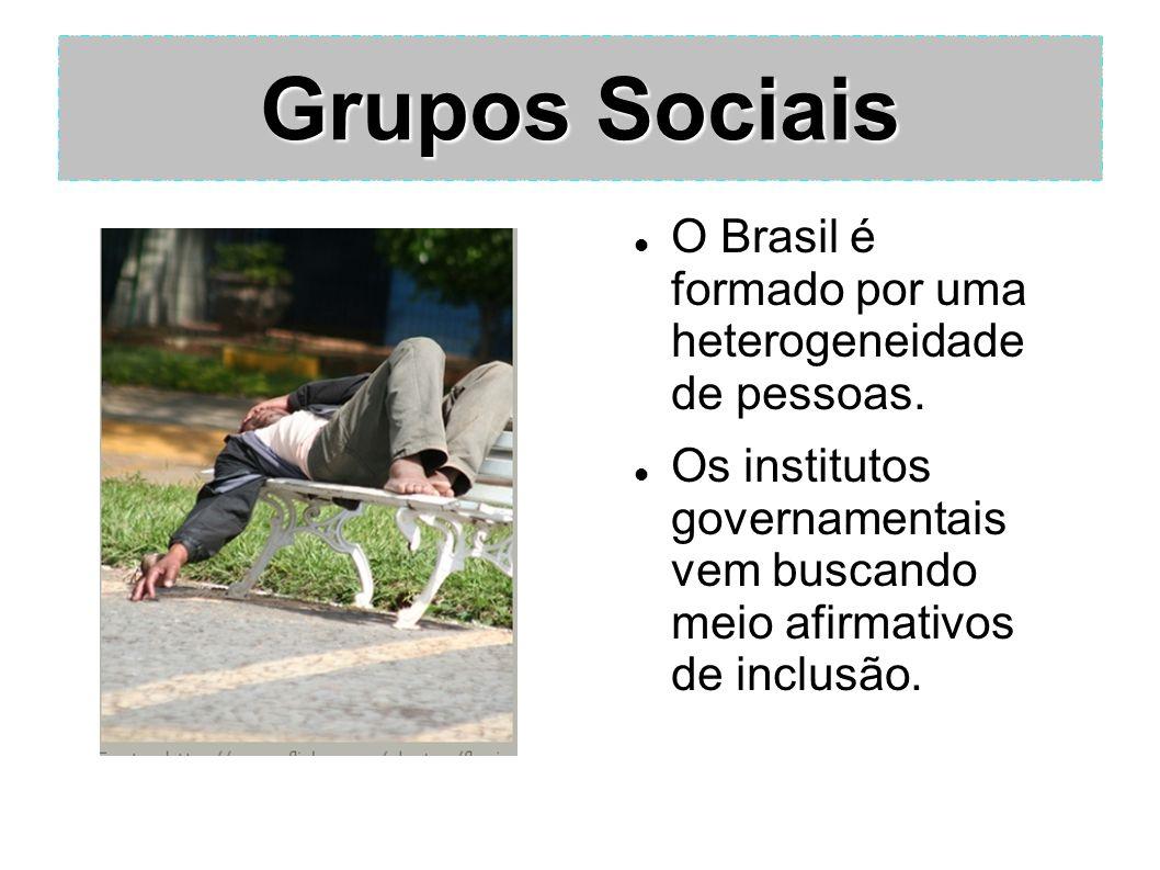 Grupos Sociais O Brasil é formado por uma heterogeneidade de pessoas. Os institutos governamentais vem buscando meio afirmativos de inclusão.