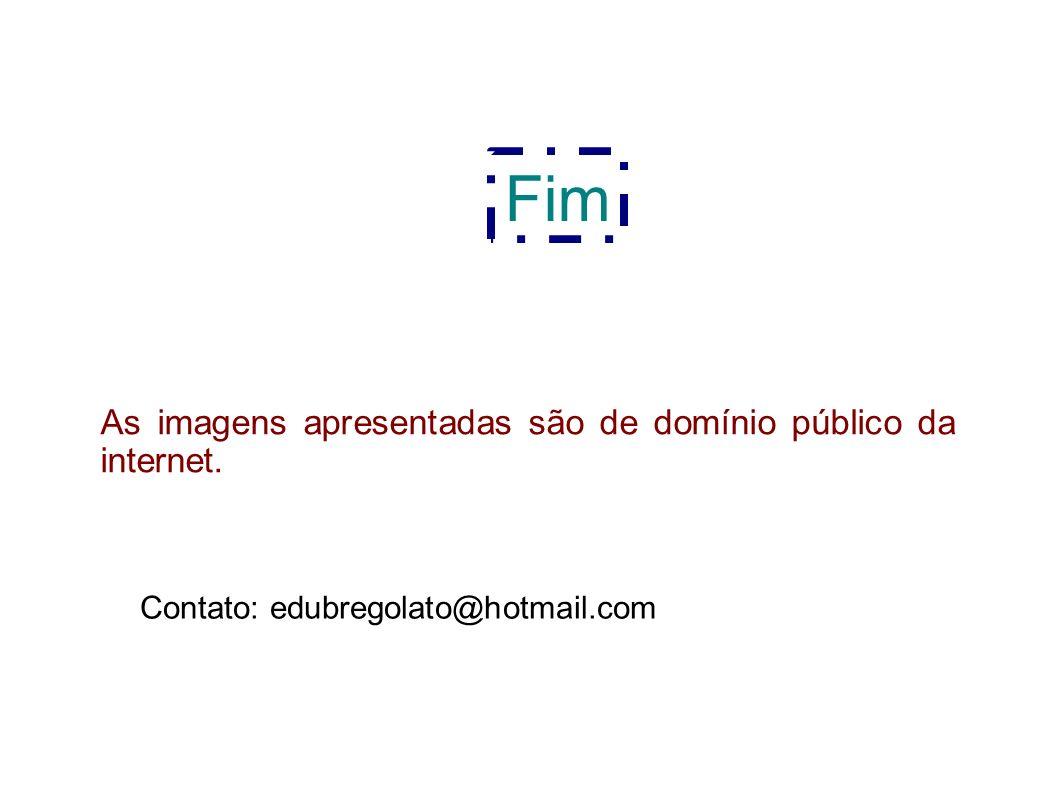 Fim As imagens apresentadas são de domínio público da internet. Contato: edubregolato@hotmail.com