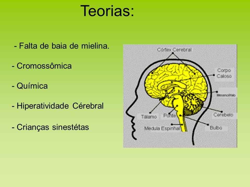 Teorias: - Falta de baia de mielina. - Cromossômica - Química - Hiperatividade Cérebral - Crianças sinestétas