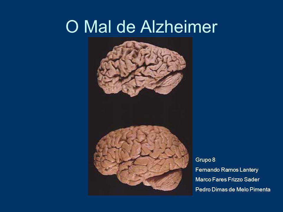 O Mal de Alzheimer Grupo 8 Fernando Ramos Lantery Marco Fares Frizzo Sader Pedro Dimas de Melo Pimenta