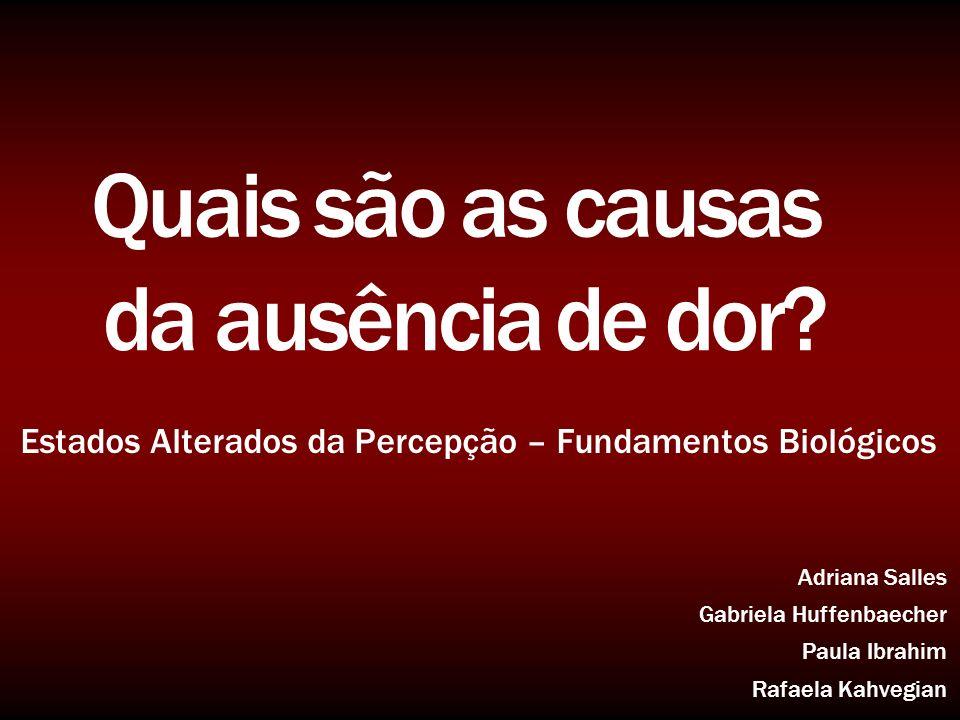 Estados Alterados da Percepção – Fundamentos Biológicos Adriana Salles Gabriela Huffenbaecher Paula Ibrahim Rafaela Kahvegian