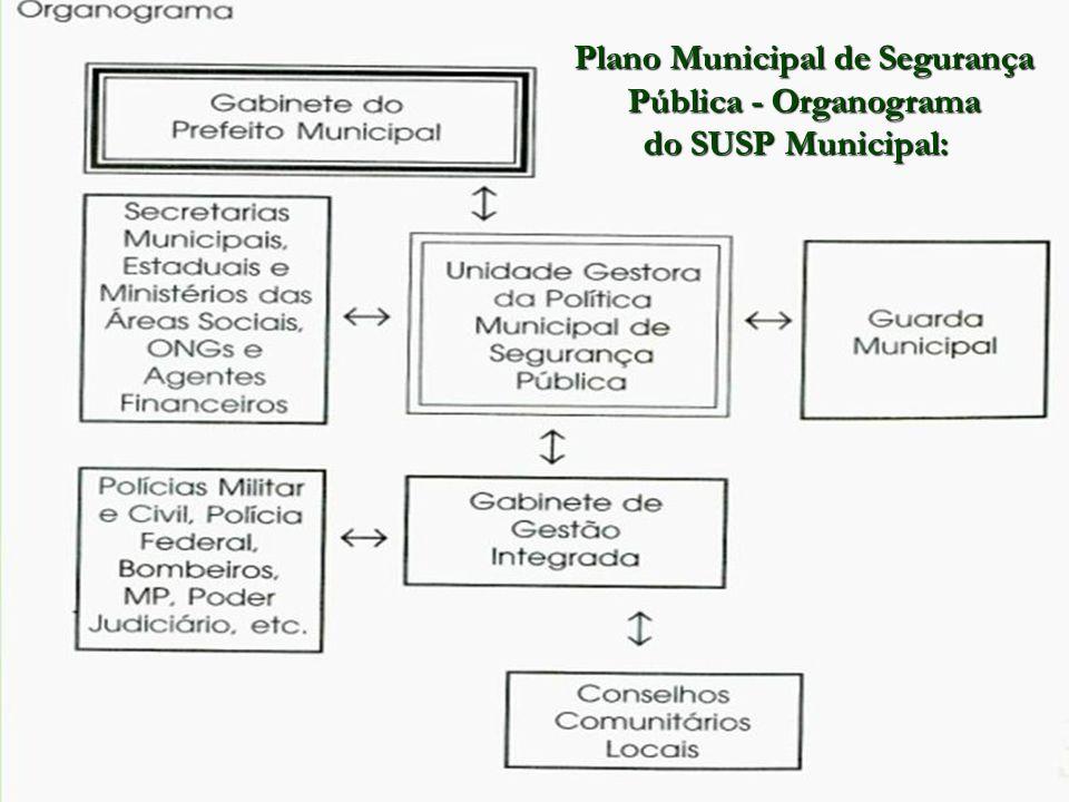Plano Municipal de Segurança Pública - Organograma do SUSP Municipal: