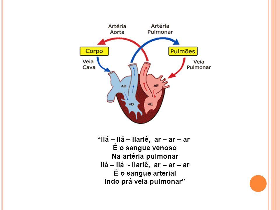 Ilá – ilá – ilariê, ar – ar – ar É o sangue venoso Na artéria pulmonar Ilá – ilá - ilariê, ar – ar – ar É o sangue arterial Indo prá veia pulmonar