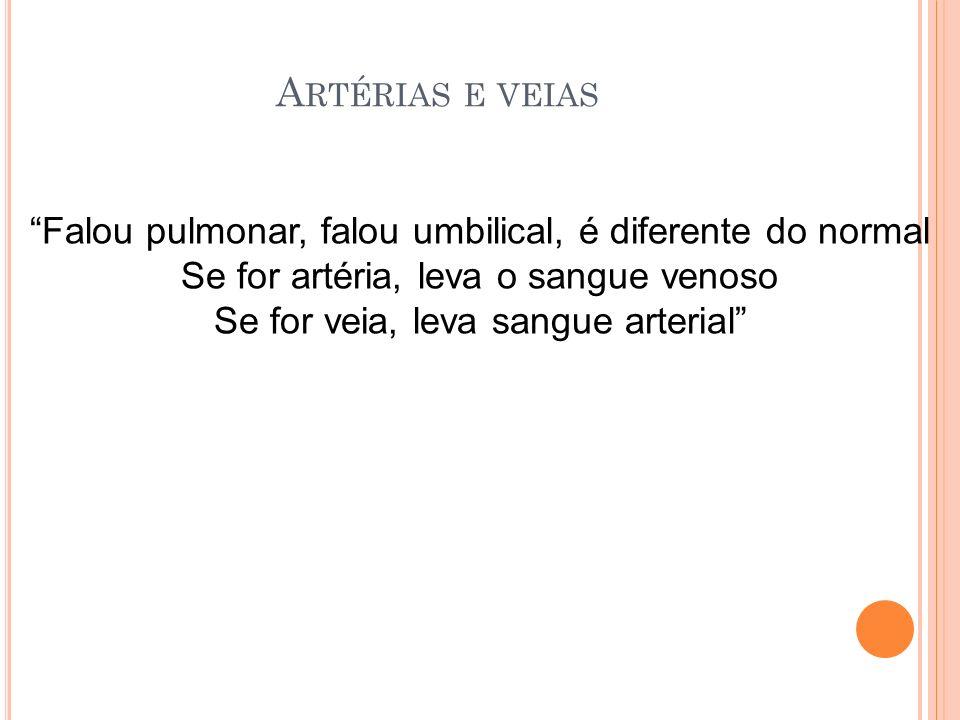 A RTÉRIAS E VEIAS Falou pulmonar, falou umbilical, é diferente do normal Se for artéria, leva o sangue venoso Se for veia, leva sangue arterial