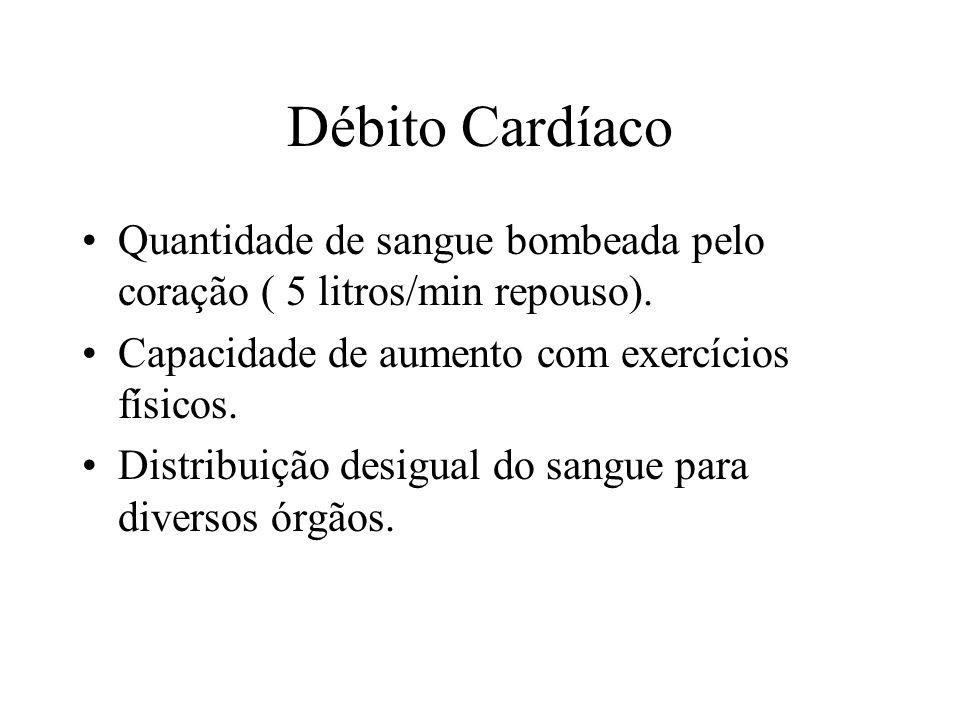 Débito Cardíaco Quantidade de sangue bombeada pelo coração ( 5 litros/min repouso).