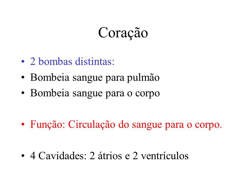 Coração 2 bombas distintas: Bombeia sangue para pulmão Bombeia sangue para o corpo Função: Circulação do sangue para o corpo.