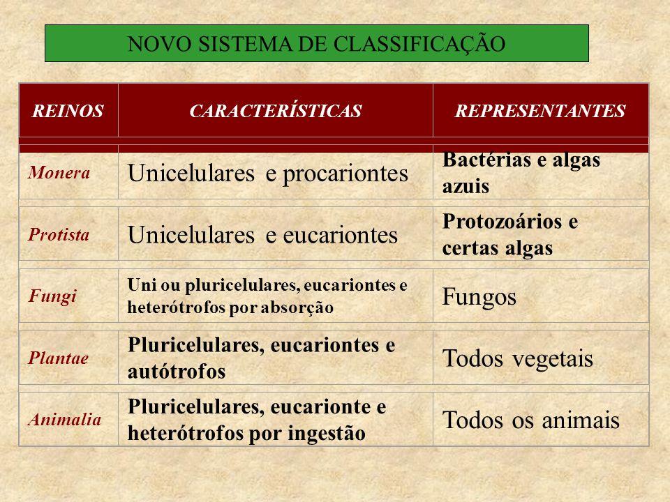 REINOSCARACTERÍSTICASREPRESENTANTES Monera Unicelulares e procariontes Bactérias e algas azuis Protista Unicelulares e eucariontes Protozoários e certas algas Fungi Uni ou pluricelulares, eucariontes e heterótrofos por absorção Fungos Plantae Pluricelulares, eucariontes e autótrofos Todos vegetais Animalia Pluricelulares, eucarionte e heterótrofos por ingestão Todos os animais NOVO SISTEMA DE CLASSIFICAÇÃO