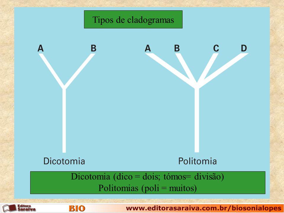 Dicotomia (dico = dois; tómos= divisão) Politomias (poli = muitos) Tipos de cladogramas