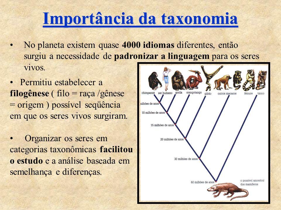 Importância da taxonomia No planeta existem quase 4000 idiomas diferentes, então surgiu a necessidade de padronizar a linguagem para os seres vivos.
