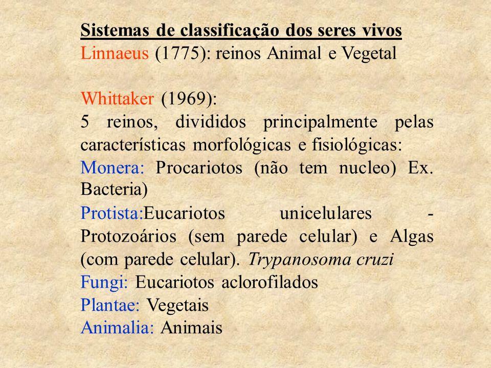 Sistemas de classificação dos seres vivos Linnaeus (1775): reinos Animal e Vegetal Whittaker (1969): 5 reinos, divididos principalmente pelas características morfológicas e fisiológicas: Monera: Procariotos (não tem nucleo) Ex.