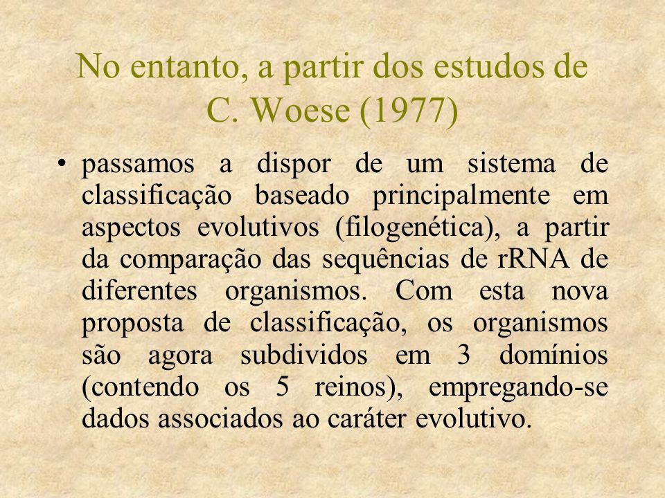 Continuação Trypanossoma cruzi Chagas, 1909 6.