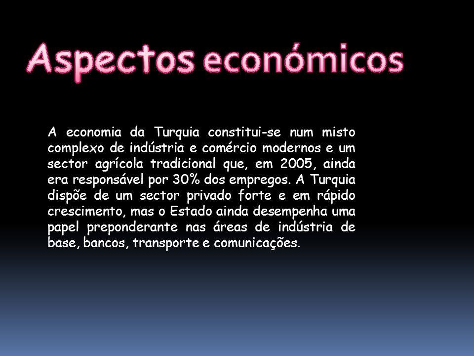 A economia da Turquia constitui-se num misto complexo de indústria e comércio modernos e um sector agrícola tradicional que, em 2005, ainda era respon