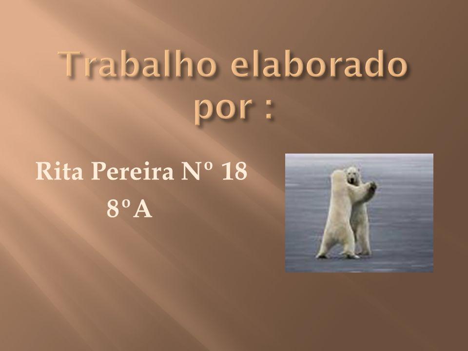 Rita Pereira Nº 18 8ºA