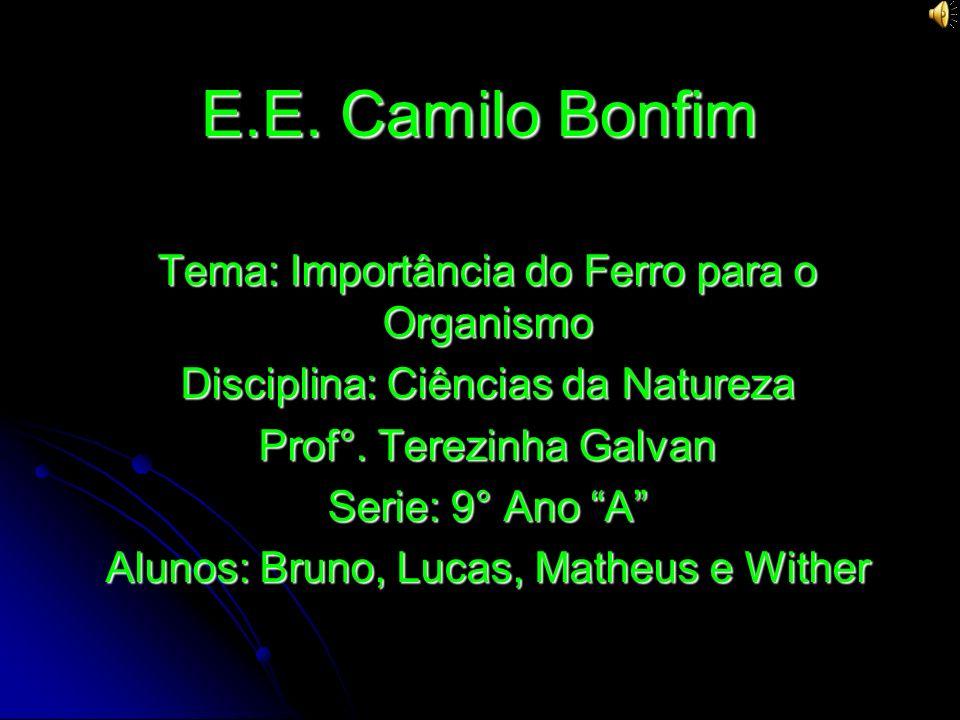 E.E. Camilo Bonfim Tema: Importância do Ferro para o Organismo Disciplina: Ciências da Natureza Prof°. Terezinha Galvan Serie: 9° Ano A Alunos: Bruno,