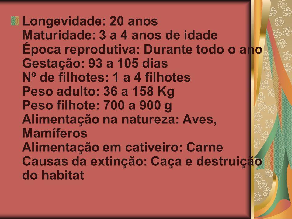 Longevidade: 20 anos Maturidade: 3 a 4 anos de idade Época reprodutiva: Durante todo o ano Gestação: 93 a 105 dias Nº de filhotes: 1 a 4 filhotes Peso