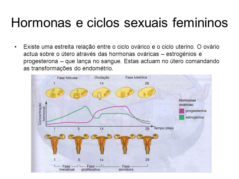 Hormonas e ciclos sexuais femininos Existe uma estreita relação entre o ciclo ovárico e o ciclo uterino. O ovário actua sobre o útero através das horm