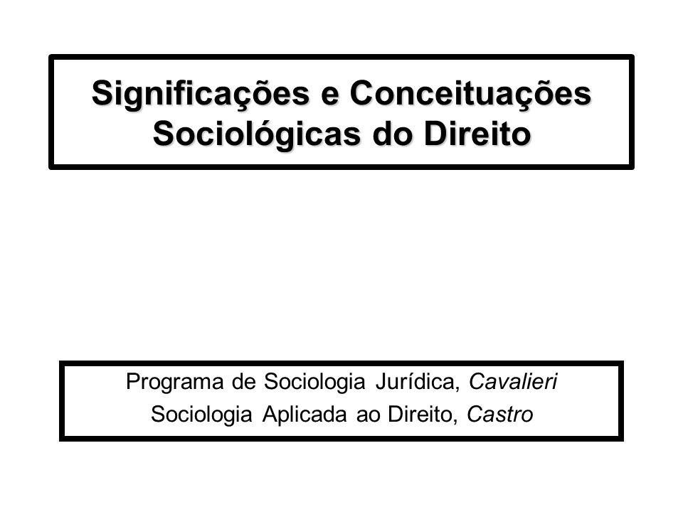 Significações e Conceituações Sociológicas do Direito Programa de Sociologia Jurídica, Cavalieri Sociologia Aplicada ao Direito, Castro