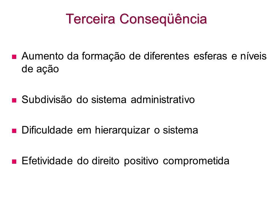 Terceira Conseqüência Aumento da formação de diferentes esferas e níveis de ação Subdivisão do sistema administrativo Dificuldade em hierarquizar o si