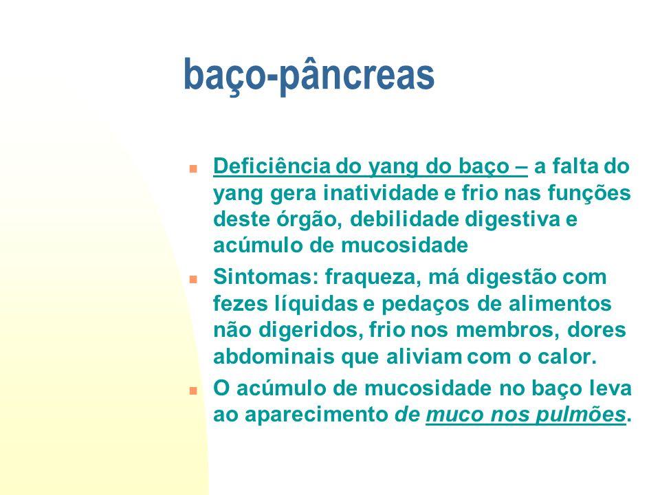 baço-pâncreas Deficiência do yang do baço – a falta do yang gera inatividade e frio nas funções deste órgão, debilidade digestiva e acúmulo de mucosid