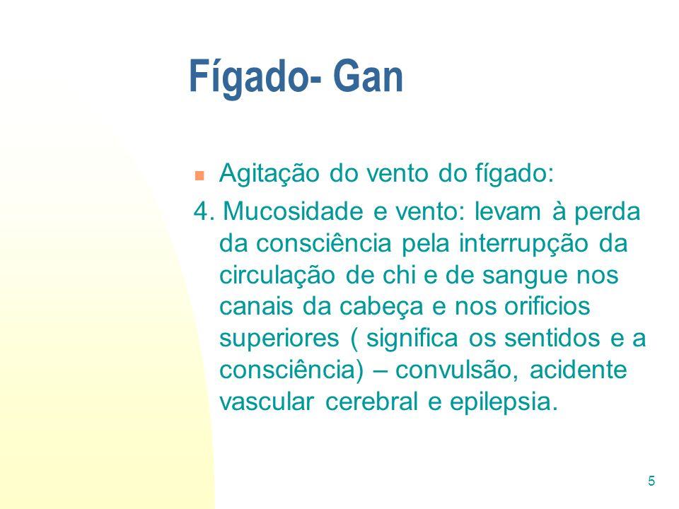 5 Fígado- Gan Agitação do vento do fígado: 4. Mucosidade e vento: levam à perda da consciência pela interrupção da circulação de chi e de sangue nos c