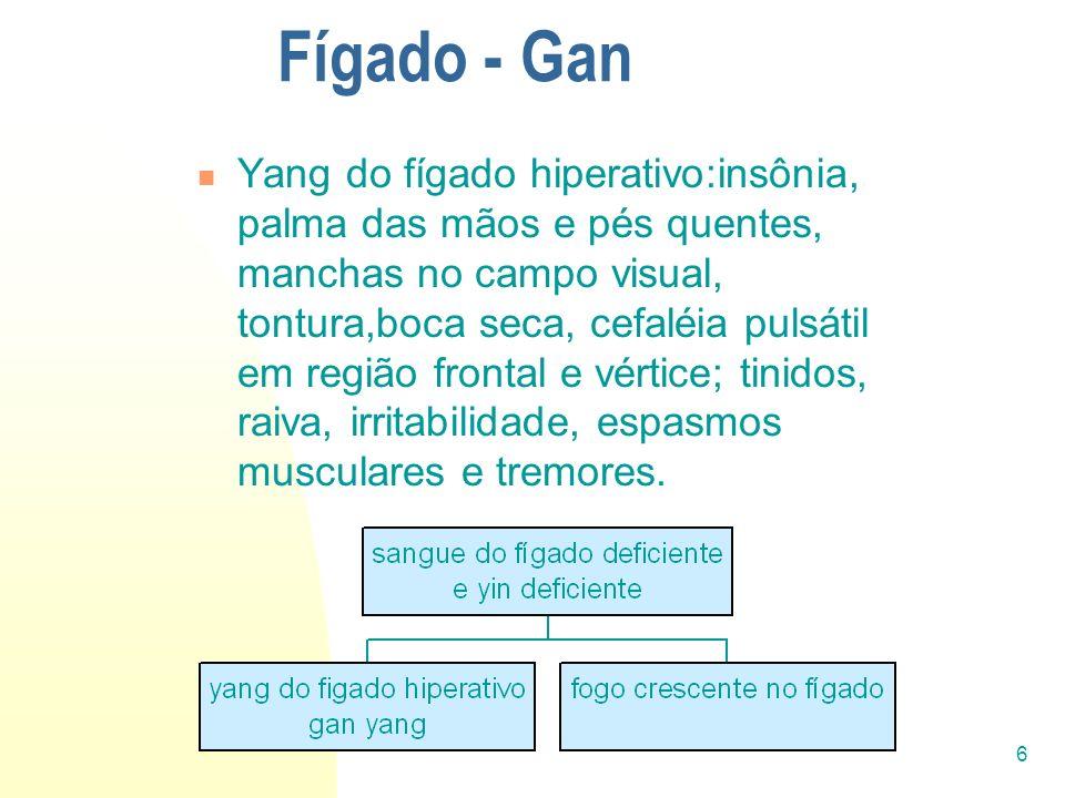 6 Fígado - Gan Yang do fígado hiperativo:insônia, palma das mãos e pés quentes, manchas no campo visual, tontura,boca seca, cefaléia pulsátil em regiã
