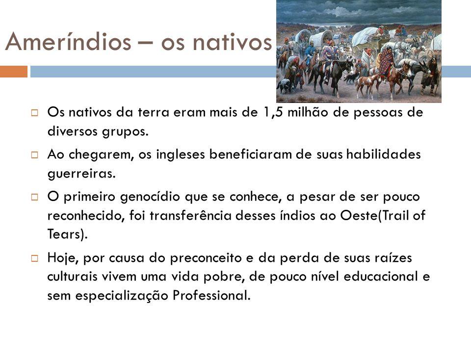 Ameríndios – os nativos Os nativos da terra eram mais de 1,5 milhão de pessoas de diversos grupos. Ao chegarem, os ingleses beneficiaram de suas habil