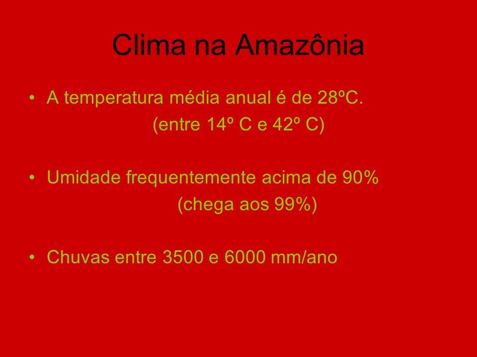 Clima na Amazônia A temperatura média anual é de 28ºC. (entre 14º C e 42º C) Umidade frequentemente acima de 90% (chega aos 99%) Chuvas entre 3500 e 6