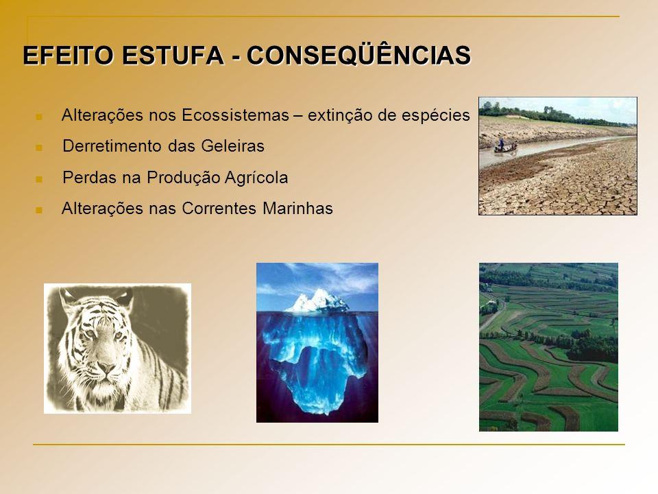 EFEITO ESTUFA - CONSEQÜÊNCIAS Alterações nos Ecossistemas – extinção de espécies Derretimento das Geleiras Perdas na Produção Agrícola Alterações nas