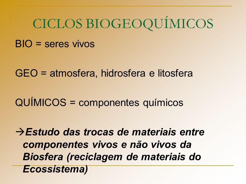 CICLO DO NITROGÊNIO Utilização por parte dos vegetais dessas 3 substâncias, ocorrendo a formação de compostos nitrogenados, utilizados pelos animais O ciclo fecha-se a partir da atividade de certas espécies de bactérias, que efetuam a desnitrificação e devolvem o nitrogênio molecular, N 2 para a atmosfera
