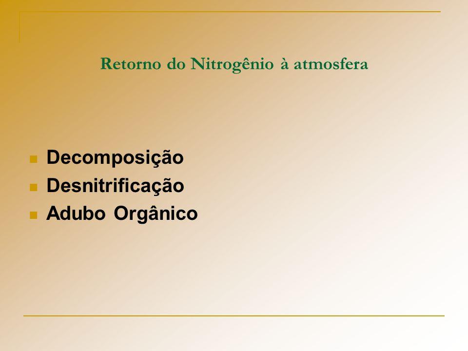 Retorno do Nitrogênio à atmosfera Decomposição Desnitrificação Adubo Orgânico