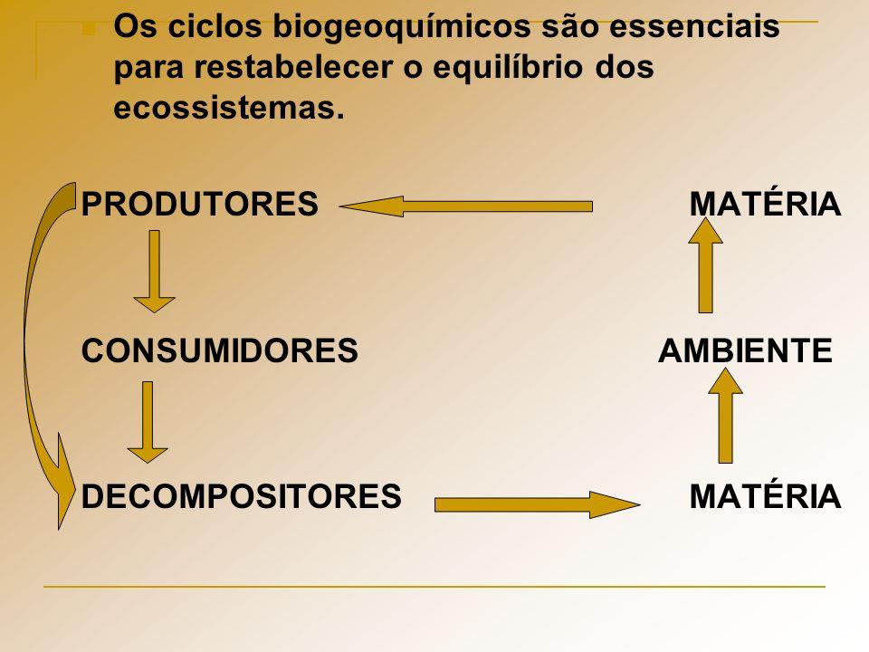 Os ciclos biogeoquímicos são essenciais para restabelecer o equilíbrio dos ecossistemas. PRODUTORESMATÉRIA CONSUMIDORES AMBIENTE DECOMPOSITORESMATÉRIA