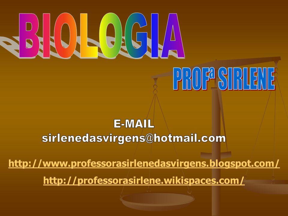 http://www.professorasirlenedasvirgens.blogspot.com/ http://professorasirlene.wikispaces.com/