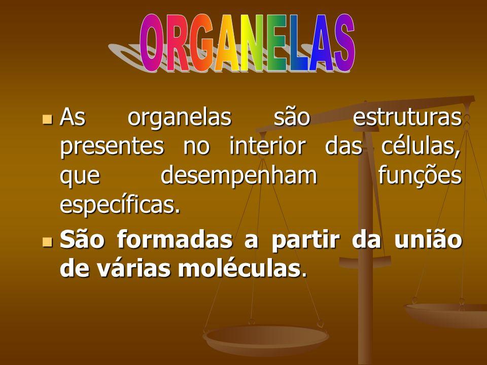 As organelas são estruturas presentes no interior das células, que desempenham funções específicas. As organelas são estruturas presentes no interior