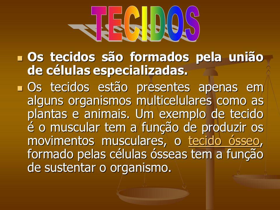 Os tecidos são formados pela união de células especializadas. Os tecidos são formados pela união de células especializadas. Os tecidos estão presentes