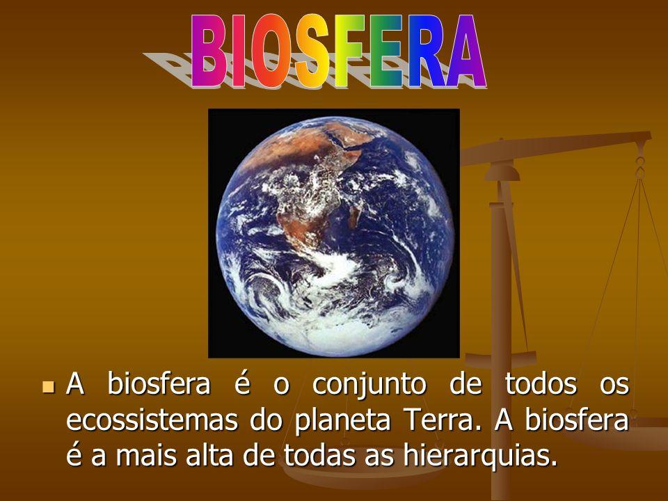 A biosfera é o conjunto de todos os ecossistemas do planeta Terra. A biosfera é a mais alta de todas as hierarquias. A biosfera é o conjunto de todos