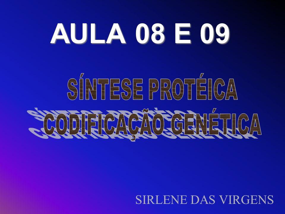 Nucleotídeos É a unidade formadora dos ácidos nucléicos: DNA e RNA.